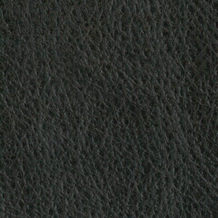 LZB-_N_yathi-Dust
